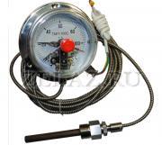 Термометры капиллярные ТМП-100С - фото